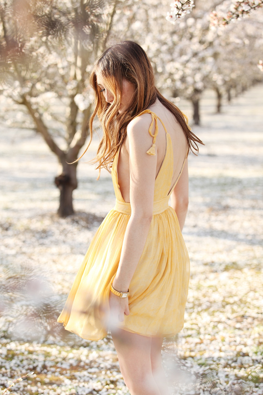 In Bloom Alyssa Nicole SS16 Yellow Silk Jane Dress 4