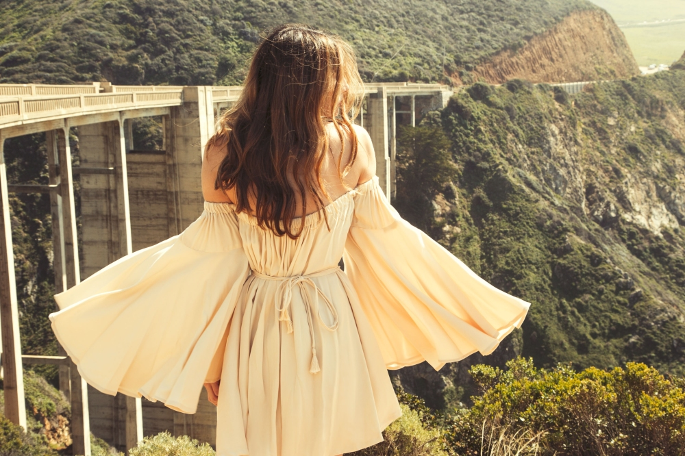 Lust for Life Big Sur Bixby Bridge Alyssa Nicole Elle Dress 3