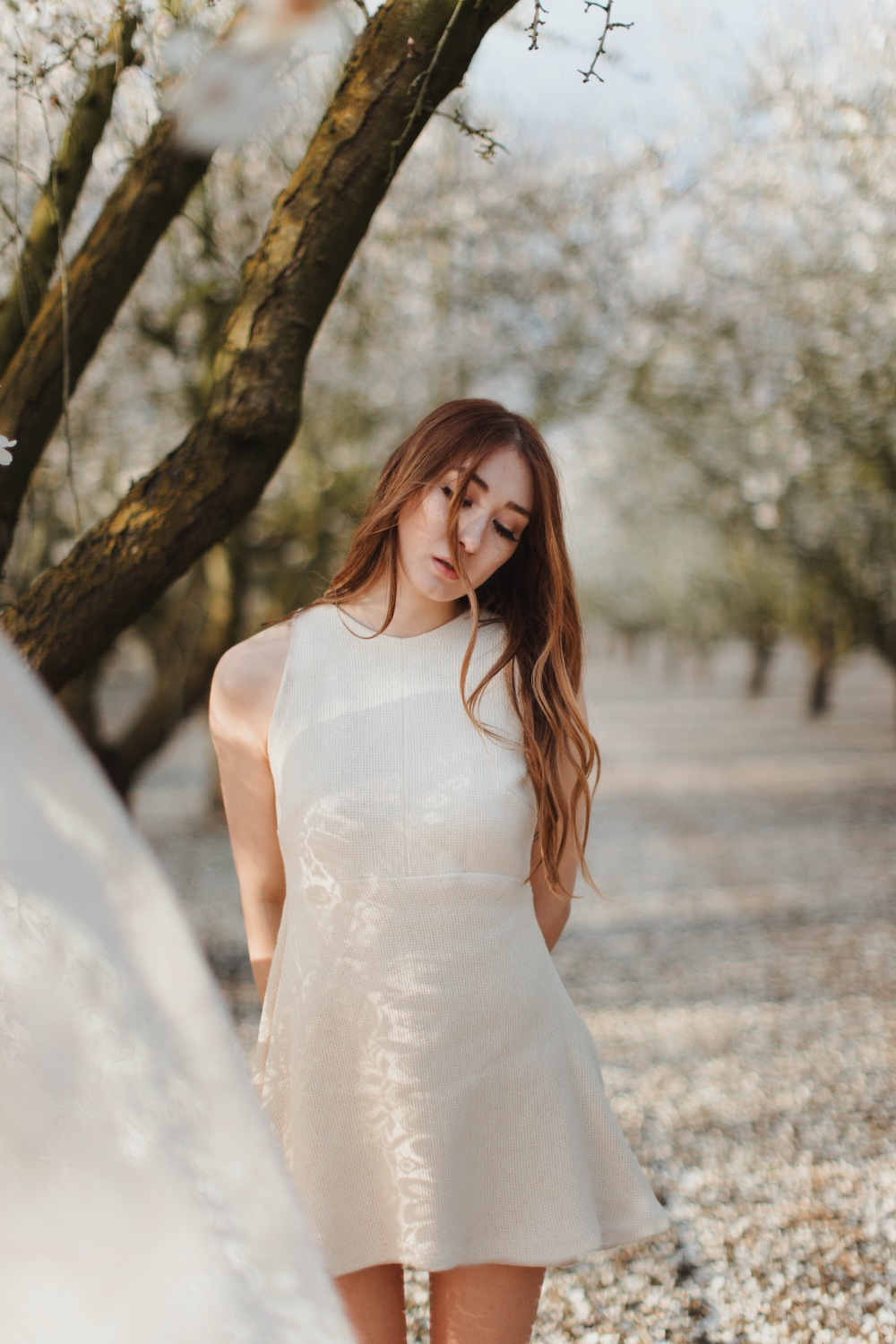 Alyssa-Nicole-Kayliegh-Dress-Beyond-The-Blossoms-9